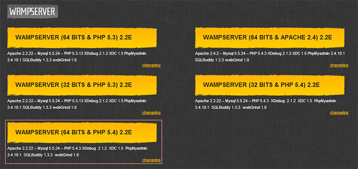Setting Up a WAMP Server on Windows | Adventurer, Lover of Film and